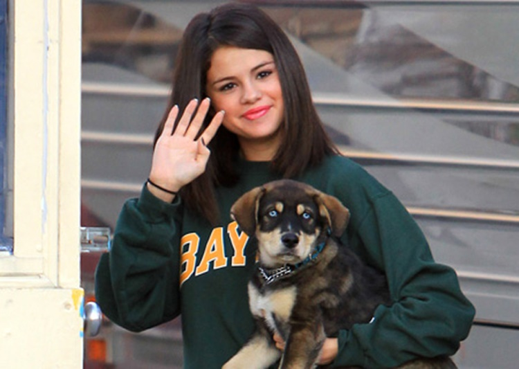 Celebrities & their beloved dogs