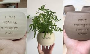 Unique Plant Pots