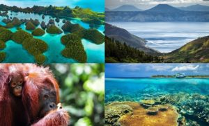 Tourist Spots in Indonesia
