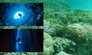 solomon islands dive sites