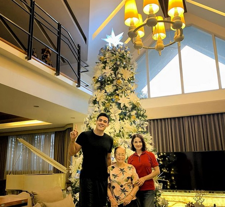 Filipino Celebrities' Christmas Trees