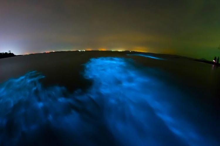 milky sea phenomenon