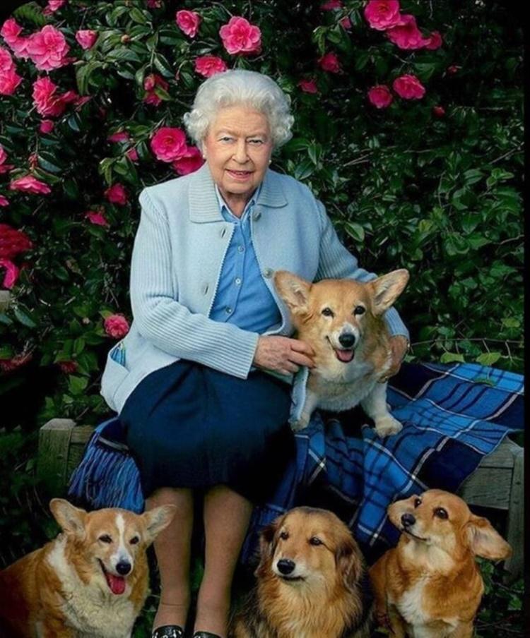Pembroke Welsh Corgi, Queen Elizabeth