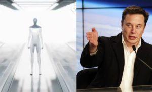 Tesla Bot, Elon Musk